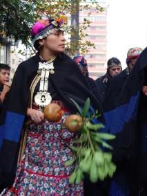 mapuchemusica004