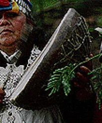 mapuchemusica006