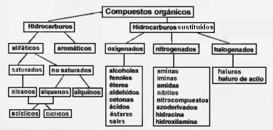 Grupos funcionales gfuncionales016 urtaz Choice Image