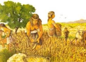 AgriculturaRev001