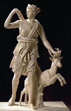 Artemisa | RM.