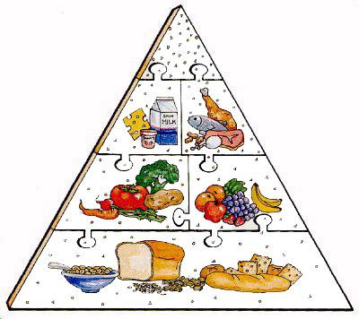 Alimentación: Grupos de alimentos