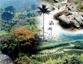 biodiversidad001