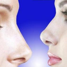 Receptores olfativos yahoo dating