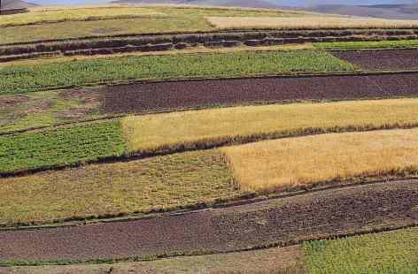 Recursos naturales o materiales for Materiales que componen el suelo