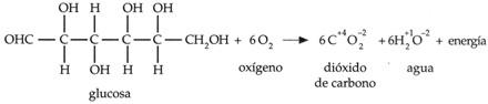 energiaquimica004