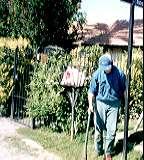 Jardineros for Jardineros ltda